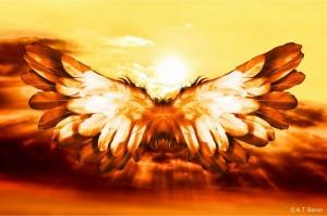 Icarus (800x530)