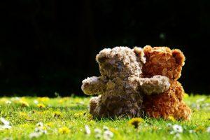 teddy-1361396 (800x532)