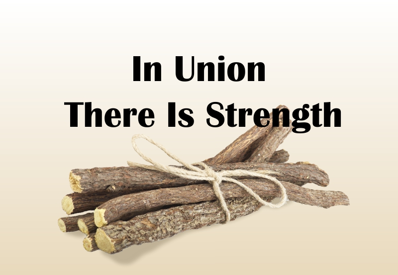 Fortune Cookie Friday: In Union, There Is Strength
